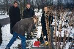 Геннадий Ломоносов, Александр Дюмин, Артём Коржуков, С. И. Маклаков на могиле А. Северного