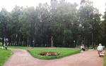 бронзовый бюст С.Есенину, установленный и открытый к 120-летию поэта в парке, носящем его имя.  (Санкт-Петербург, Невский район, у метро Дыбенко, площадь парка 22 га)
