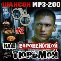 Над Воронежской тюрьмой - 2