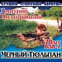 Чёрный тюльпан. 70 лет ВДВ-2